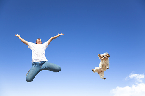young man and dog jumping in the sky